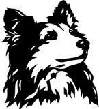 Zwart-witte de Herdershondillustratie van Shetland stock illustratie