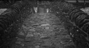 Zwart-witte dichte omhooggaande mening van historische steenbrug van Roman tijden in een afgezonderde bergvallei royalty-vrije stock afbeelding