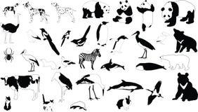 Zwart-witte dieren Royalty-vrije Stock Fotografie