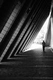 Zwart-witte eenzaam Stock Afbeelding