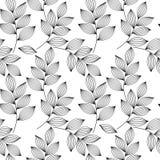 Zwart-witte elegante bladeren met aders naadloos patroon, vector royalty-vrije illustratie