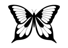 Zwart-witte elegante vlinder Royalty-vrije Stock Foto