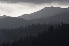 Zwart-witte foto van Karpatische bergen Stock Afbeeldingen
