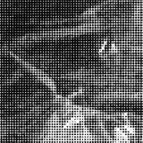 Zwart-witte gestippelde achtergrond Stock Afbeelding