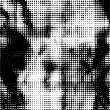 Zwart-witte gestippelde achtergrond Stock Foto