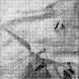 Zwart-witte gestippelde achtergrond Stock Foto's