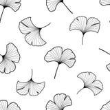 Zwart-witte grafische ginkgo verlaat naadloos patroon Royalty-vrije Stock Afbeelding