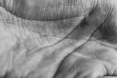 Zwart-witte handstructuur Stock Fotografie