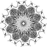 Zwart-witte illustratie van een mandala - een bloem van het leven Vogels en vleugels royalty-vrije illustratie