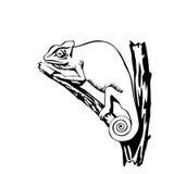 Zwart-witte kameleonillustratie Stock Afbeeldingen
