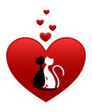 Zwart-witte katten Royalty-vrije Stock Fotografie