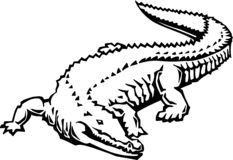 Zwart-witte Krokodilleillustratie vector illustratie