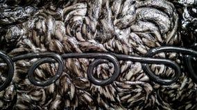 Zwart-witte kunststof na het smelten textuur stock afbeeldingen