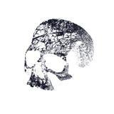 Zwart-witte menselijke schedel Stock Foto