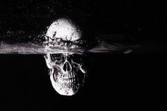 Zwart-witte menselijke schedel Stock Foto's