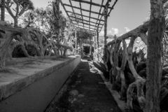 Zwart-witte mooie dichte omhooggaand van een fantastische rustende plaats royalty-vrije stock fotografie