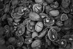 Zwart-witte okkernoten, voedselachtergrond Royalty-vrije Stock Afbeeldingen