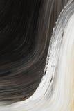 Zwart-witte olie-geschilderde kromme royalty-vrije illustratie