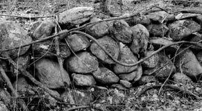 Zwart-witte rotsen Stock Fotografie