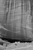 Zwart-witte ruïnes - Royalty-vrije Stock Afbeeldingen