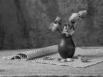 Zwart-witte stilllife stock foto
