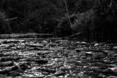 Zwart-witte stroom Stock Afbeelding