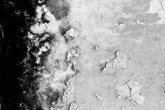 Zwart-witte textuurachtergrond van de oude paddestoelmuur, Stock Foto's