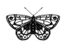 Zwart-witte vectorillustratie van een vlinder vector illustratie