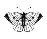 Zwart-witte vectorillustratie van een vlinder Hand getrokken insectschets Gedetailleerde grafische tekening van muur bruin in wij royalty-vrije illustratie
