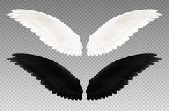 Zwart-witte Vleugels Transparante Reeks royalty-vrije illustratie