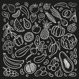 Zwart-witte vruchten en groenten in organische krabbelstijl vector illustratie