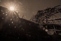 Zwart-witte wandelingssleep aan de wijngaard royalty-vrije stock afbeelding