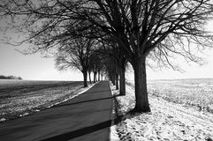 Zwart-witte weg Stock Foto