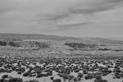 Zwart-witte Woestijn zonder levend royalty-vrije stock fotografie