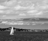 Zwart-witte zeilboot die naar Waiheke Nieuw Zeeland gaan Stock Fotografie