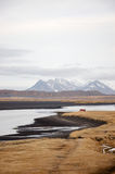 Zwart zandstrand, droog gras, Hvitserkur, IJsland Stock Foto's