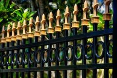 Zwarte Aluminiumomheining met gouden kappen royalty-vrije stock afbeelding
