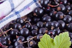 Zwarte bessen in de keuken stock afbeelding