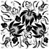 Zwarte bloemen op een witte achtergrond Royalty-vrije Stock Fotografie