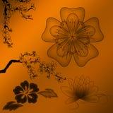 Zwarte bloemornamenten Royalty-vrije Stock Foto's