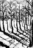 Zwarte bomen, zwarte schaduwen Royalty-vrije Stock Fotografie