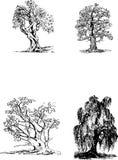 Zwarte boomsilhouetten Royalty-vrije Stock Afbeelding