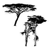 Zwarte boomsilhouetten op witte achtergrond Royalty-vrije Stock Foto