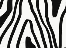 Zwarte borstellijnen op witte achtergrond, imitatie van zebrad het formatteren royalty-vrije illustratie