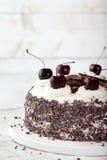 Zwarte boscake, Schwarzwald-pastei, donker chocolade en kersendessert Stock Afbeelding
