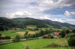 Zwarte boslandschappen in Duitsland Stock Foto's