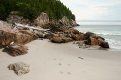 Zwarte Brooke Cove - Kaap Breton - Nova Scotia stock afbeeldingen