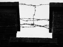 Zwarte dark van het prikkeldraad enge gevaar Royalty-vrije Stock Foto's