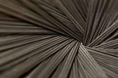 Zwarte deegwaren stock fotografie