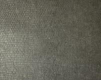 Zwarte dichte omhooggaand van de slanghuid Achtergrond Textuur royalty-vrije stock afbeelding